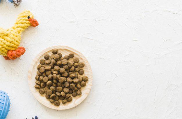 Hrana za psa
