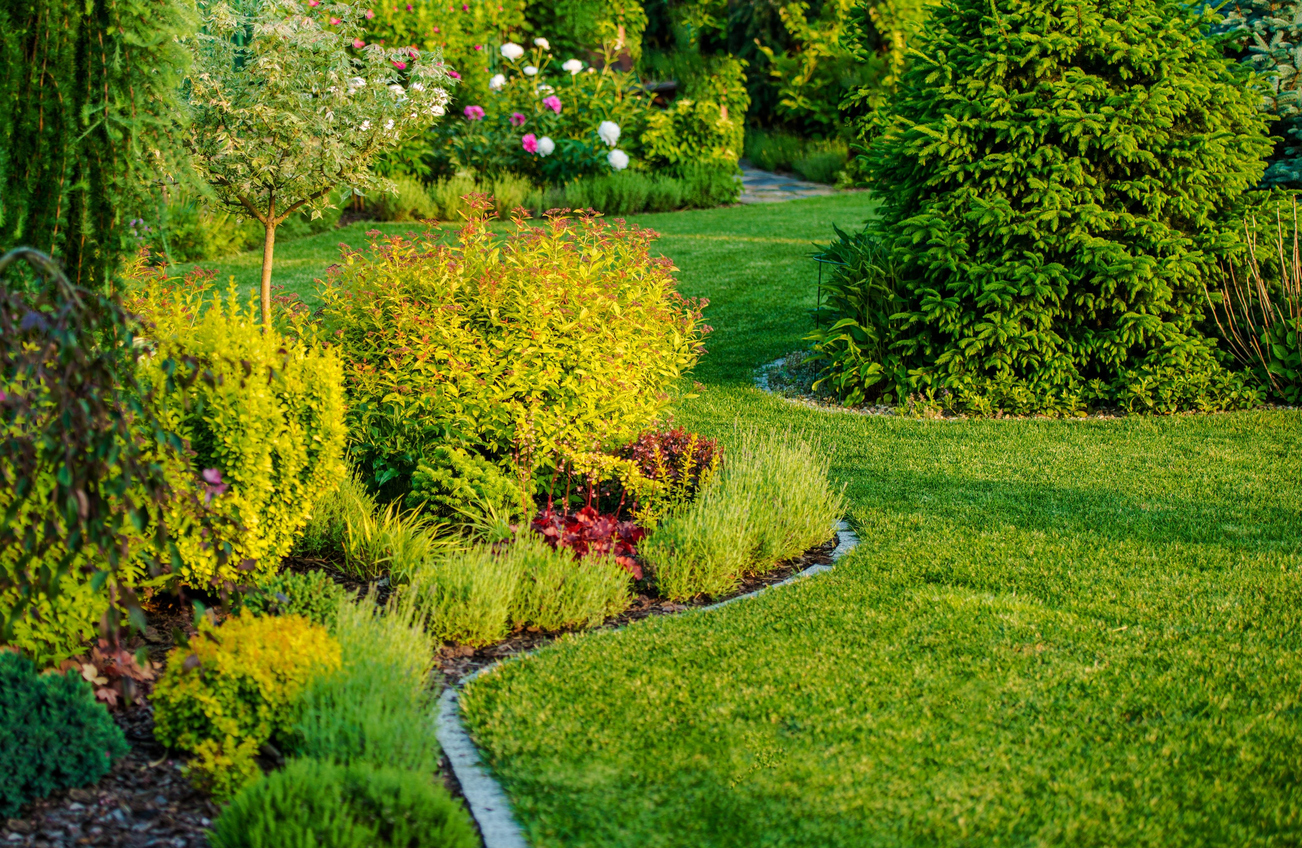 Najboljši pripomočki za vaš vrt